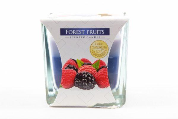 Duftkerze Waldfrucht 170g./32h. - Zuhause und Wohnen>Kerzen
