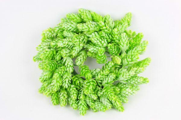 Hopfenkranz 25cm - Für Geschäfte und Künstler>Blumenarrangement>Künstliche Blumen und Pflanzen