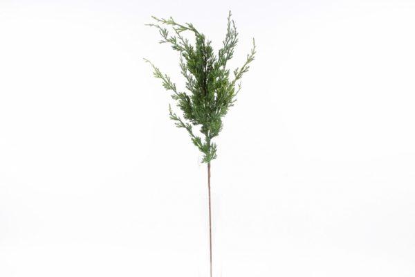 Zypressenzweig - Für Geschäfte und Künstler>Blumenarrangement>Künstliche Blumen und Pflanzen